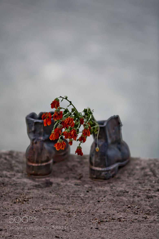 Photograph commemoration by Ottó Hargita on 500px