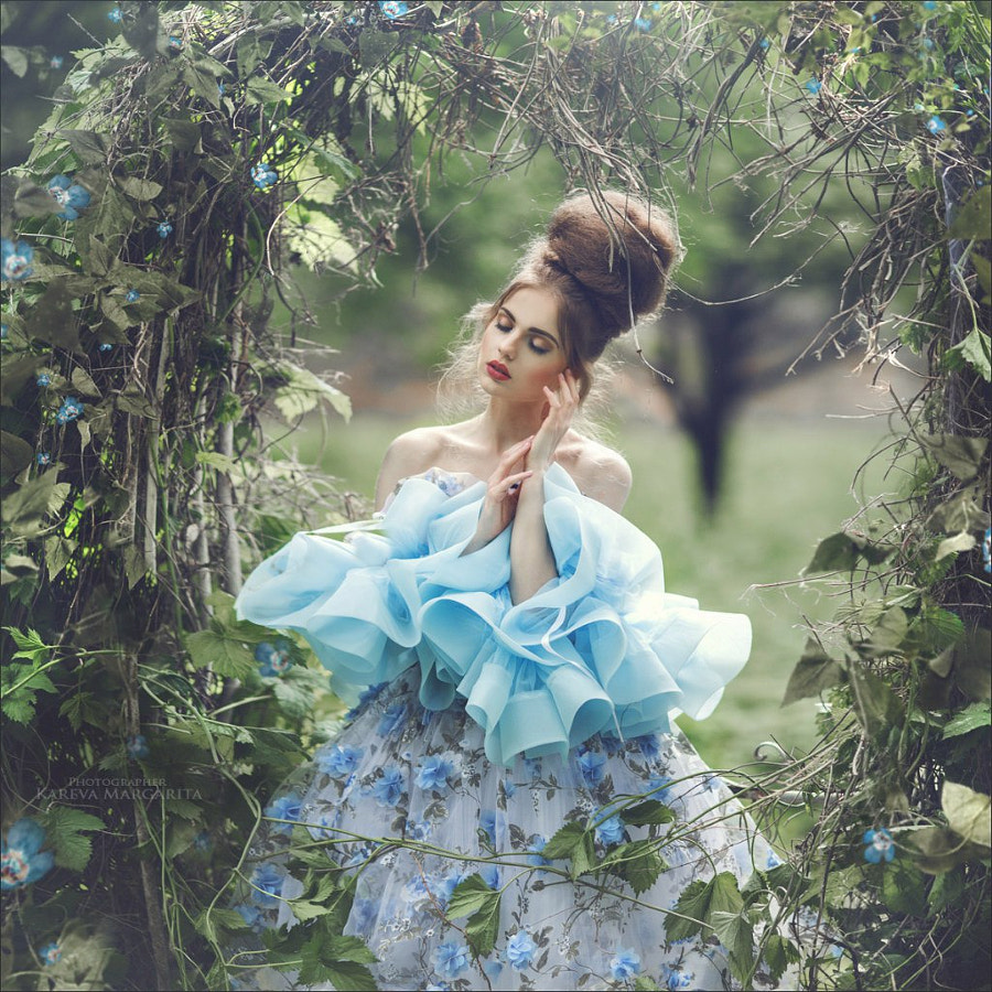 blue Rose by Margarita Kareva on 500px.com