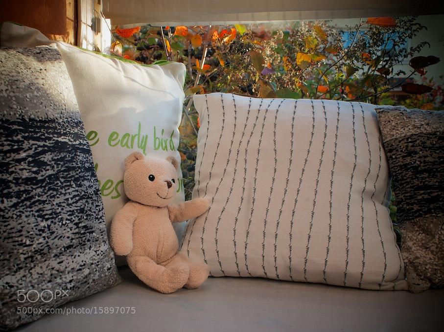 Photograph Teddybears Sunday  by Pia Parkkonen on 500px
