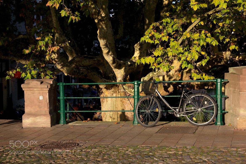 Photograph Vélo by Armandtchou L on 500px