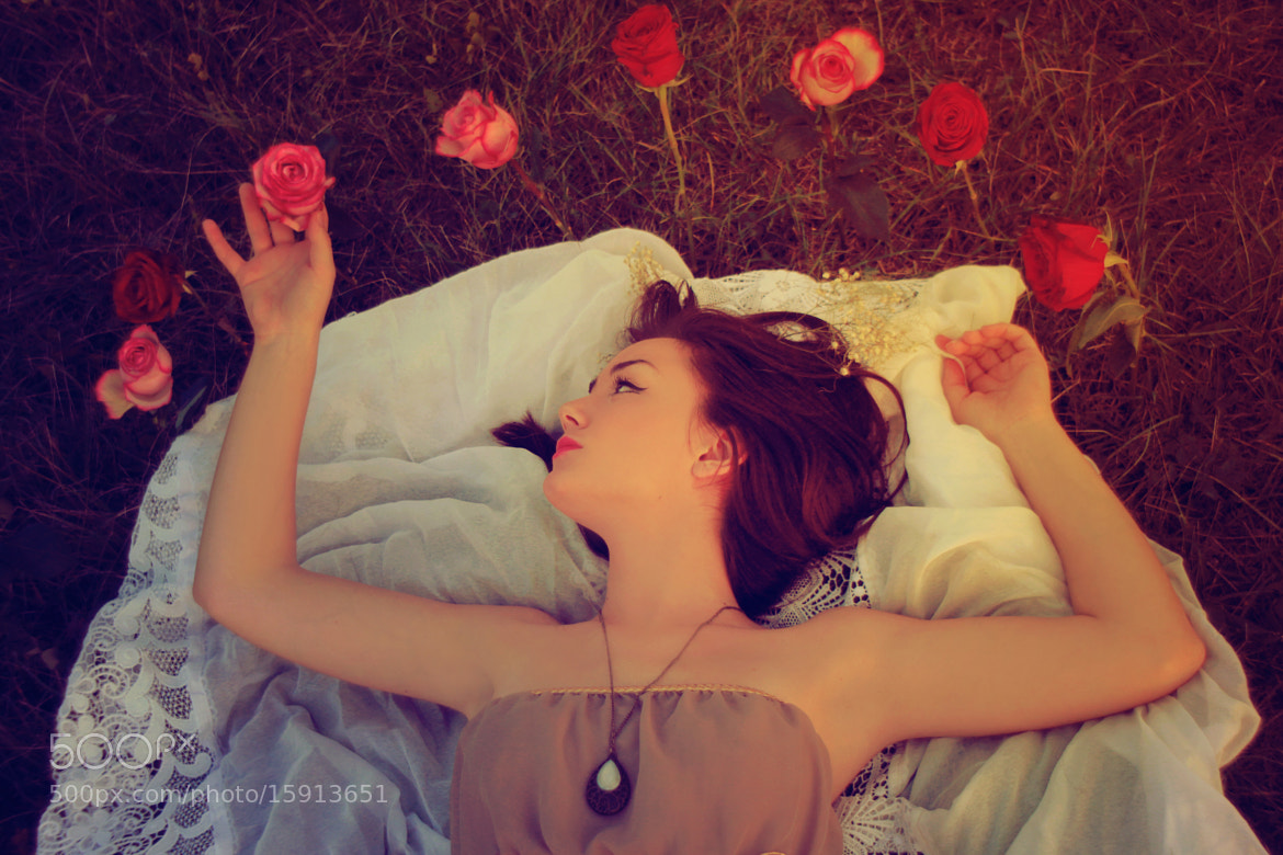 Photograph Bed of roses by Maja Topčagić on 500px