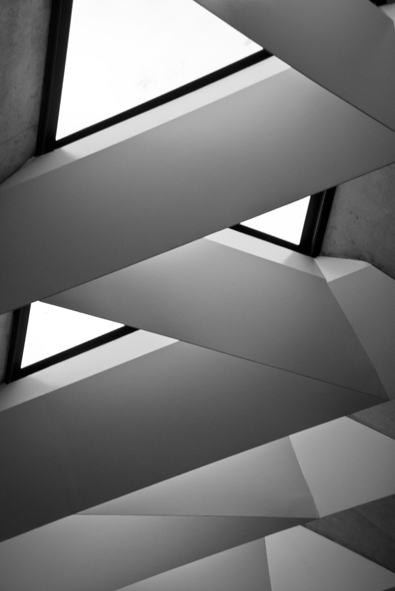 Photograph Lines by Claudia Silva on 500px
