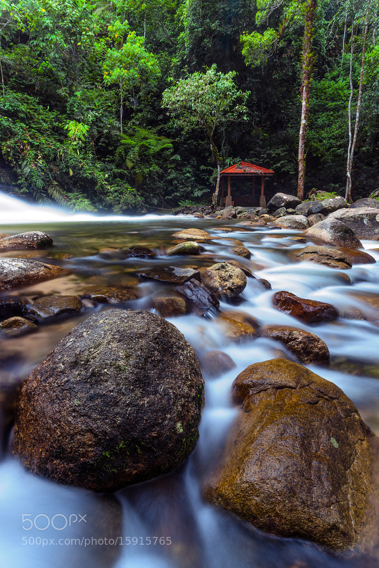 Photograph ...lata bukit hijau by Keris Tuah on 500px