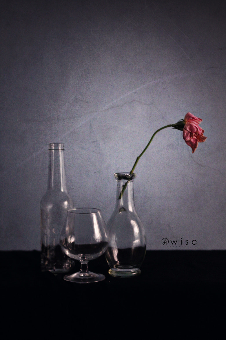Photograph Still Life  by Owise Abuzaid on 500px