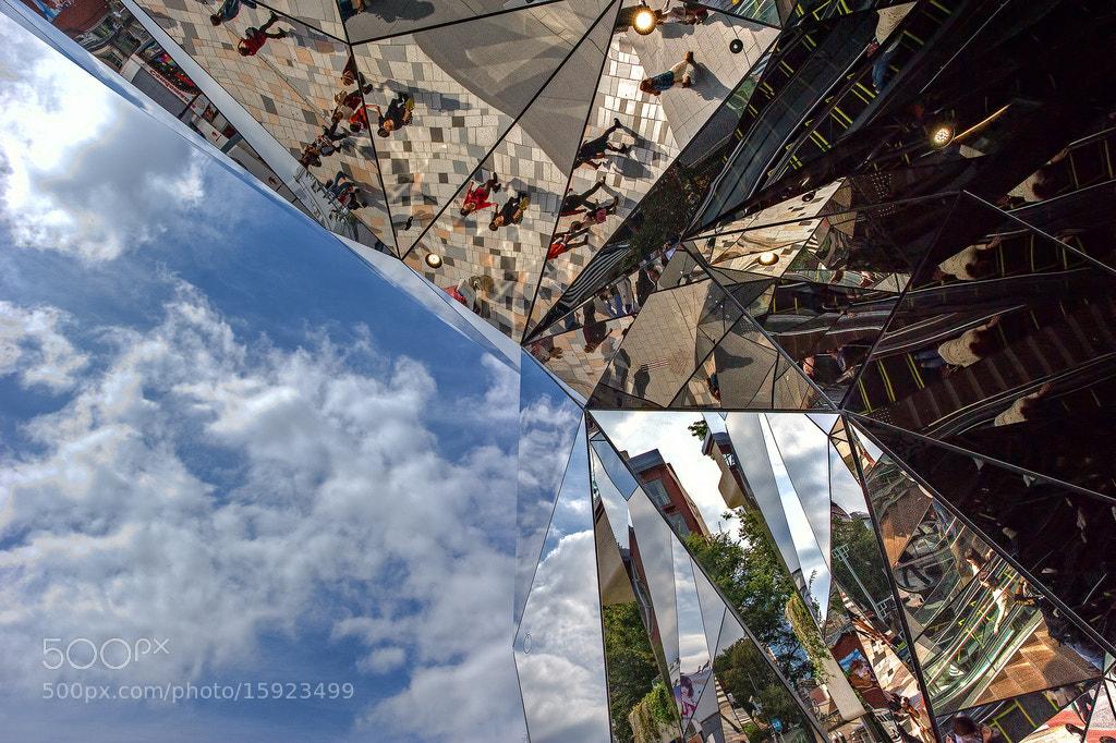 Photograph Salvia Sky by Jon Sheer on 500px