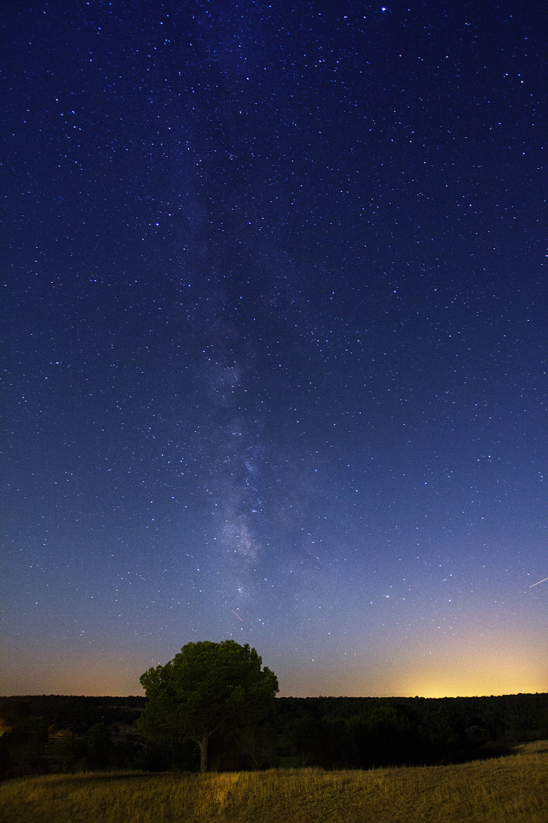 Photograph Stars by Rafael Pinto on 500px