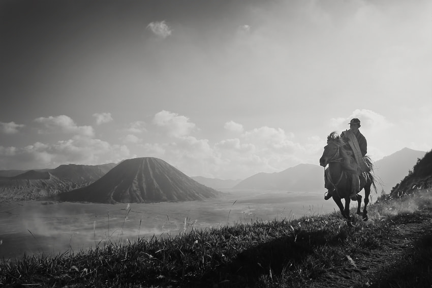 Photograph horse rider by JD Ardiansyah on 500px