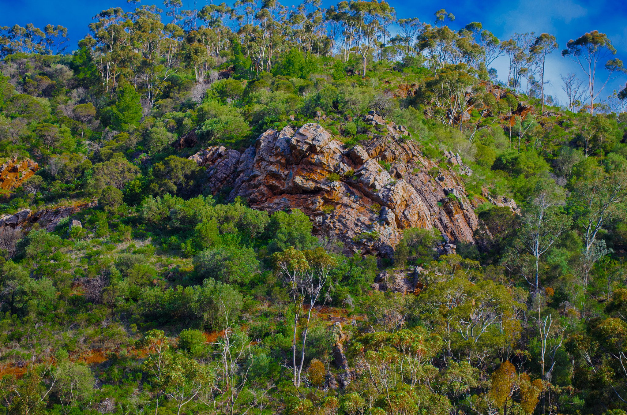Photograph Morialta by Mick Wilson on 500px
