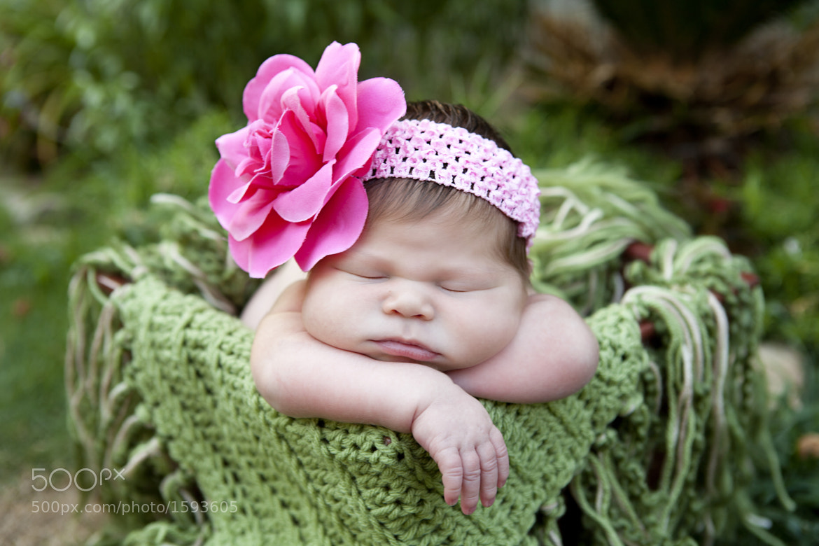 Photograph Cabbage Patch  by Jessica Villemain on 500px