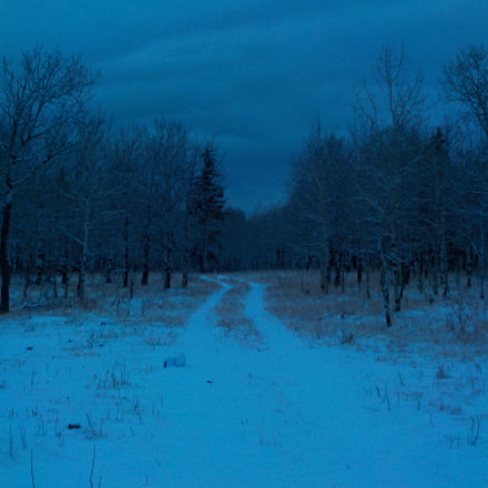 The Haunted Winter Trail, Nikon COOLPIX S32