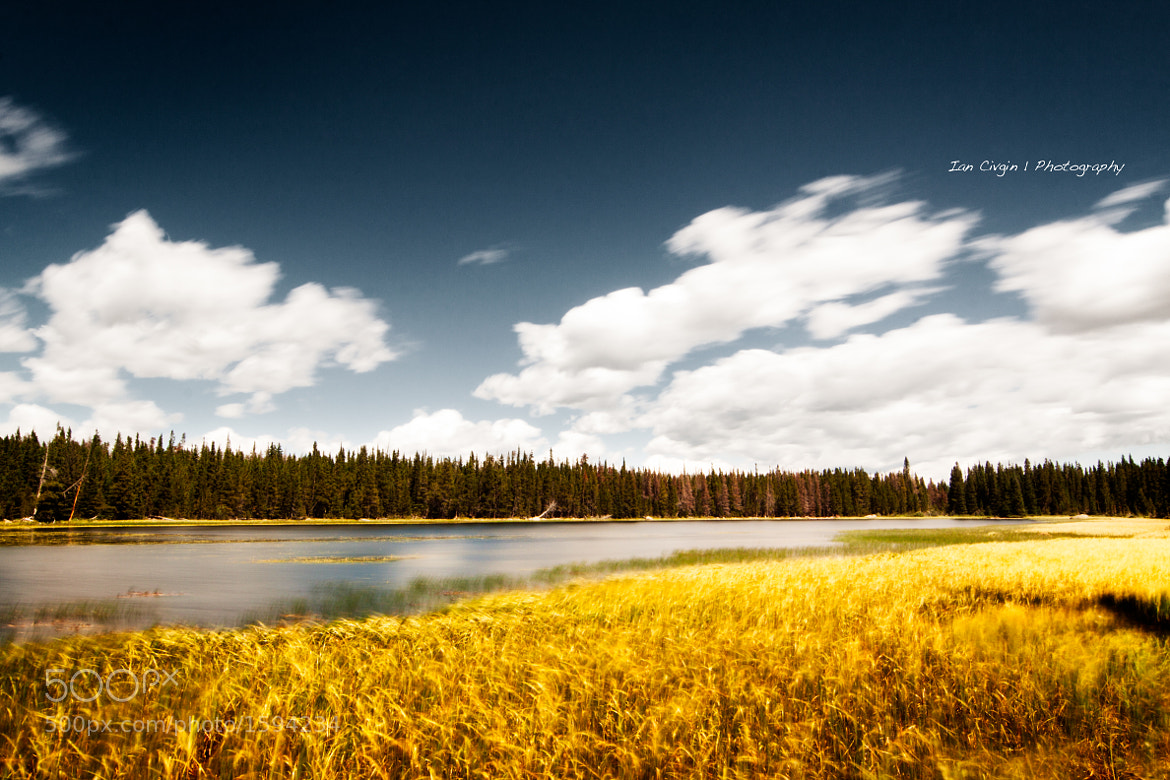 Photograph Bierstadt Lake by Ian Civgin on 500px