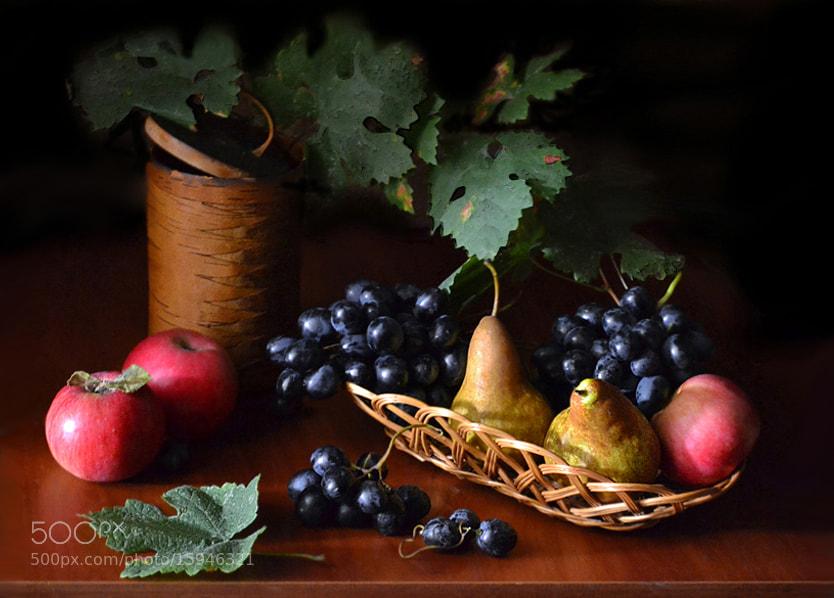 Photograph Velvet taste of autumn... by Ирина Никитина on 500px