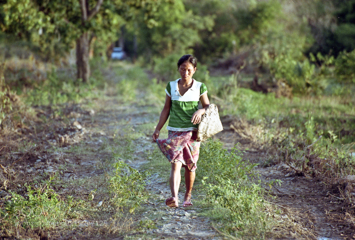 Photograph Woman in the field, Cambodia by Andrea Margelli Photography on 500px