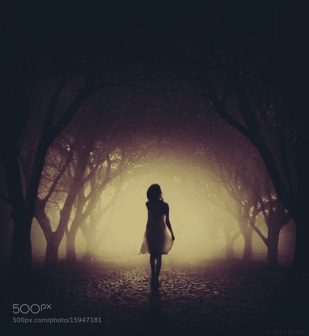 Photograph the dark alley by kimera jam on 500px