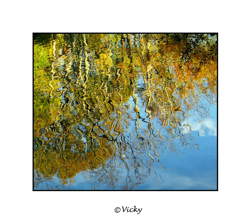 Photograph autumn reflections by Vicky Dens on 500px