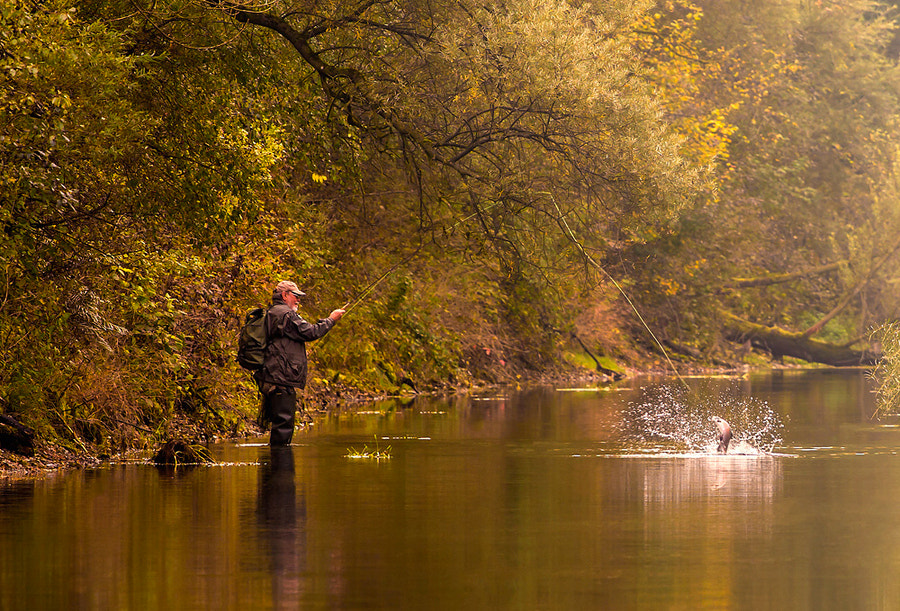 Photograph Fly Fishing by Falk Friederichs on 500px