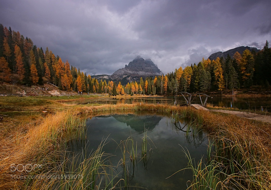 Photograph Autumn in Antorno Lake by lorenzo savinelli on 500px