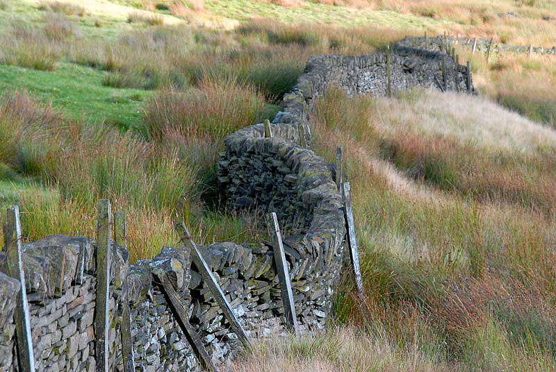 Photograph DRY-STONE WALLS ON THE MOORS... by Magda Indigo on 500px