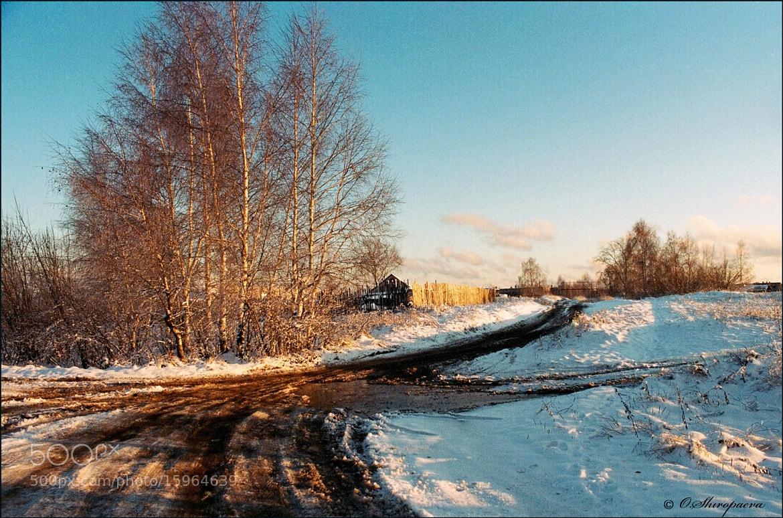 Photograph #1265337 by Olga Shiropaeva on 500px