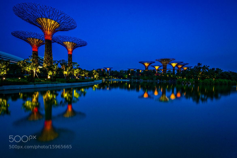 Photograph Gardens By The Bay 2, Singapore by Antonio Obispo on 500px