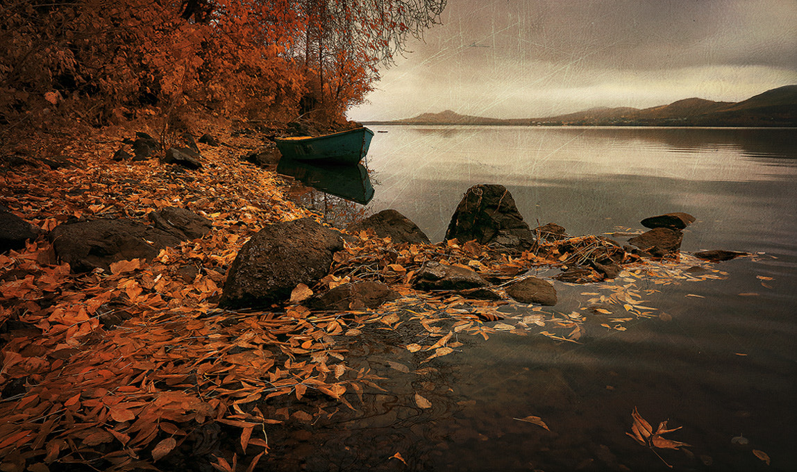 Photograph The final touches of autumn ... by Alexander Sysuev on 500px