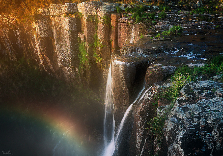 Majestic Moments by Thomas Brown on 500px.com