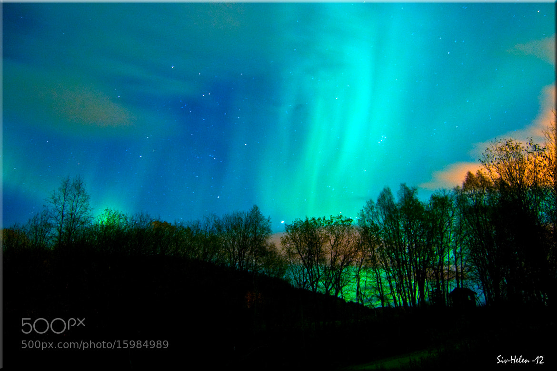 Photograph Aurora Borealis by Siv-Helen Alterskjær on 500px
