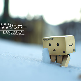 SNOW - Danbo Monogatari by iDragon Studio (iDragonStudio)) on 500px.com
