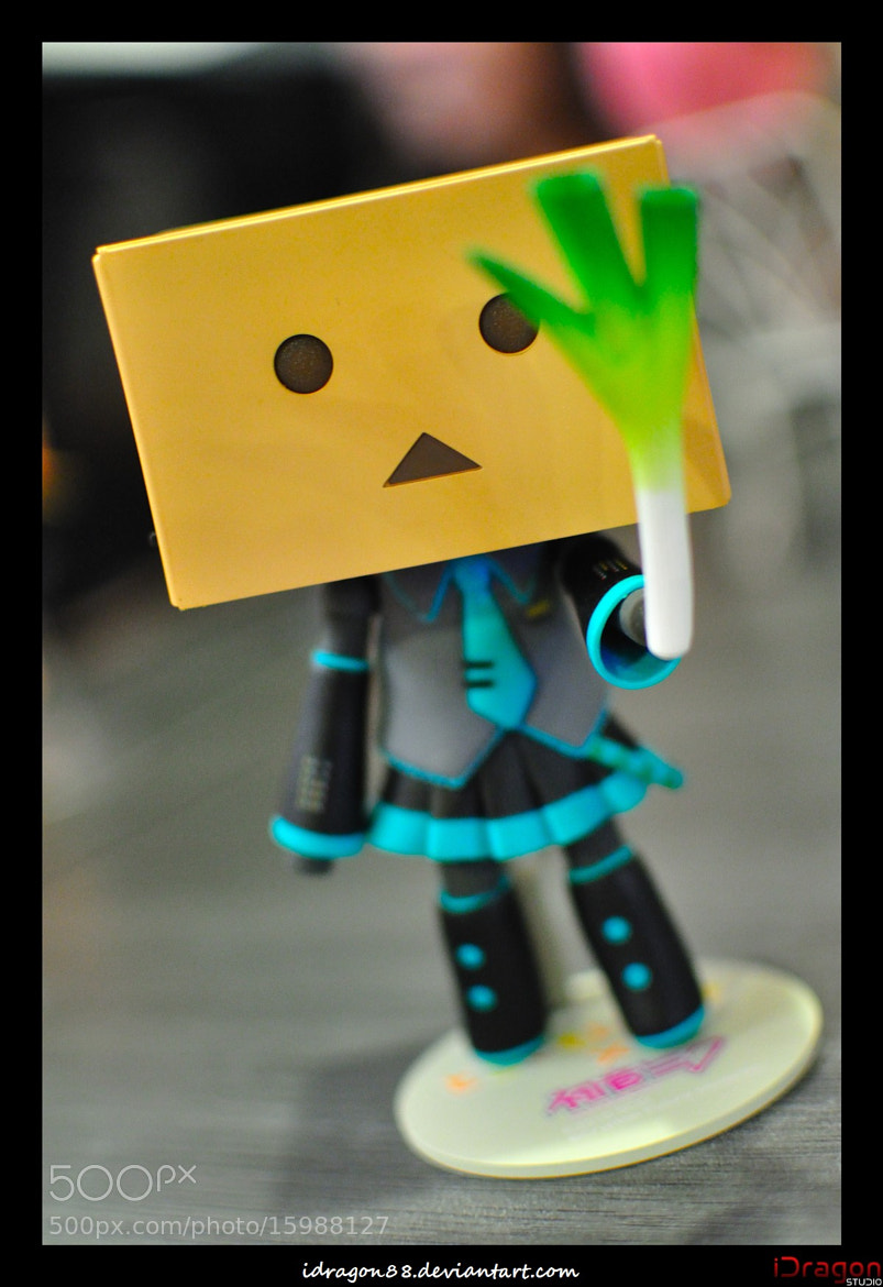 Photograph Hatsune Miku Cos Danbo?!? by iDragon Studio on 500px