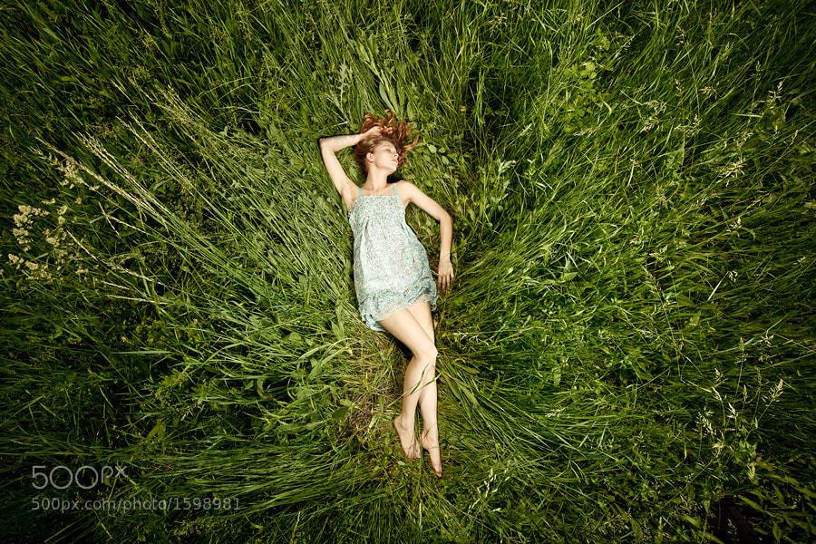 Photograph Fallen star by Vitaliy Timkiv on 500px