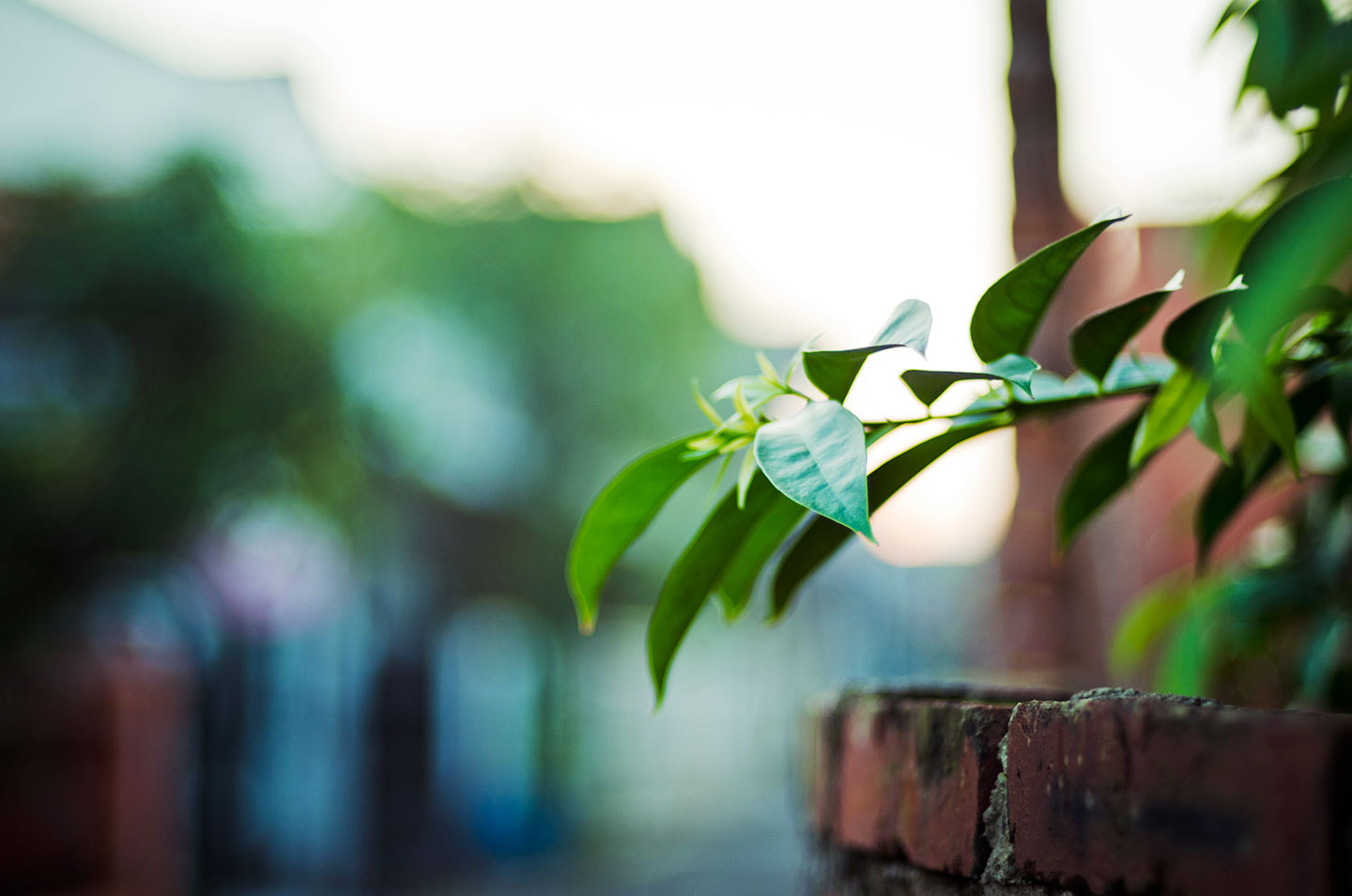 Photograph Tip by Bady qb on 500px