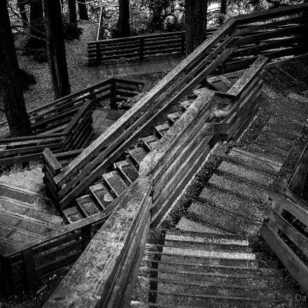 Wooden stairs, Canon POWERSHOT SD500