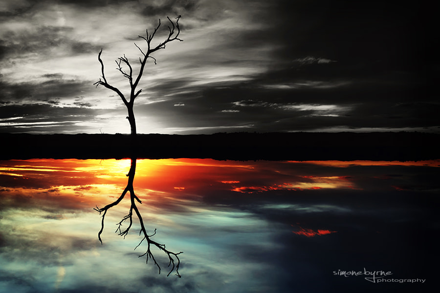 Photograph Colour My Reflection by Simone Byrne on 500px