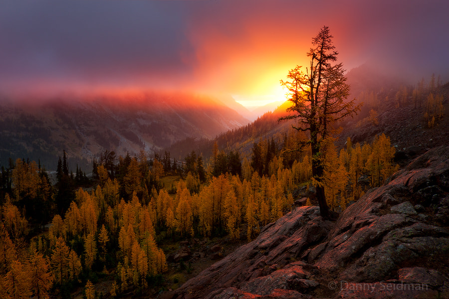 Photograph Valley of Gold by Danny Seidman on 500px