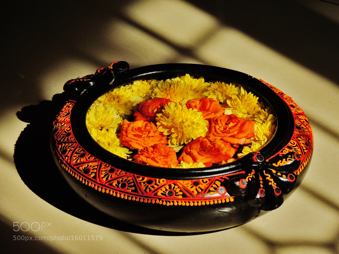 Photograph Indian terracotta urulli with matching flowers. by Ravi S R on 500px