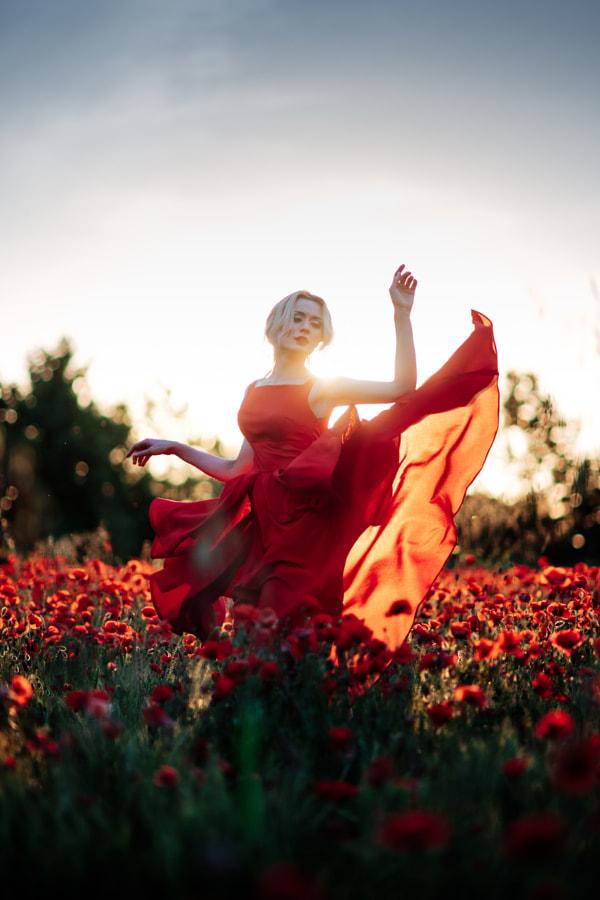 Marco Bernardi创作的日落和罂粟花在500px.com