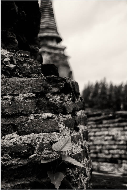 Photograph B&W ruins, Ayithaya. by Jim Best on 500px