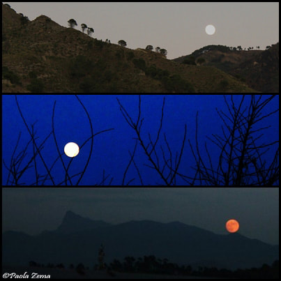 Photograph Full moon collage by Paola Zema on 500px
