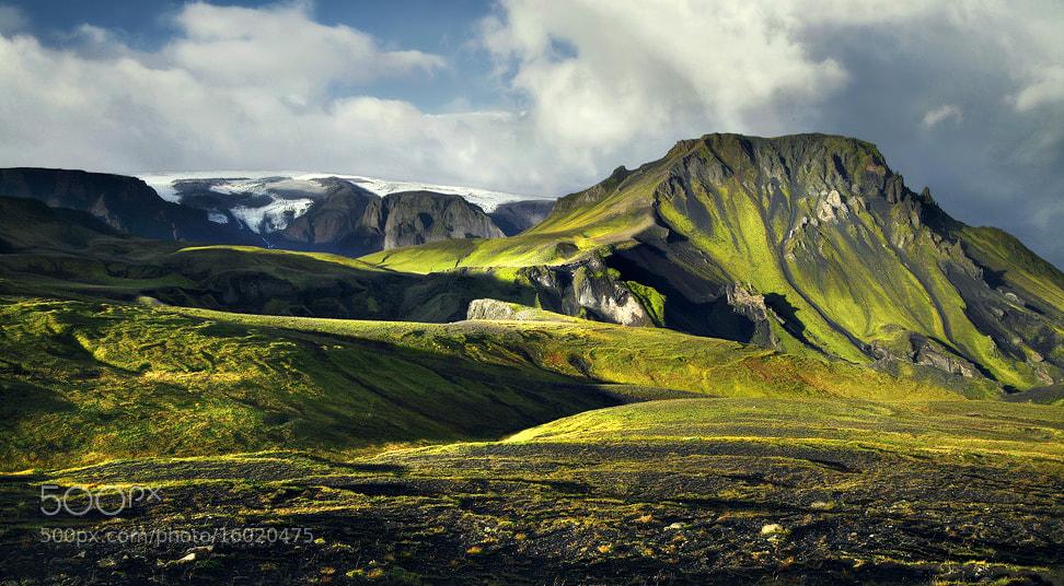 Photograph Iceland - Sunrise Moss by Kilian Schönberger on 500px