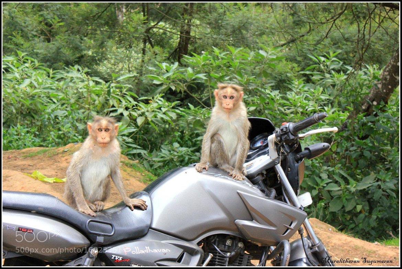 Photograph We wanna go for RIDE by Muralitharan Sugumaran on 500px