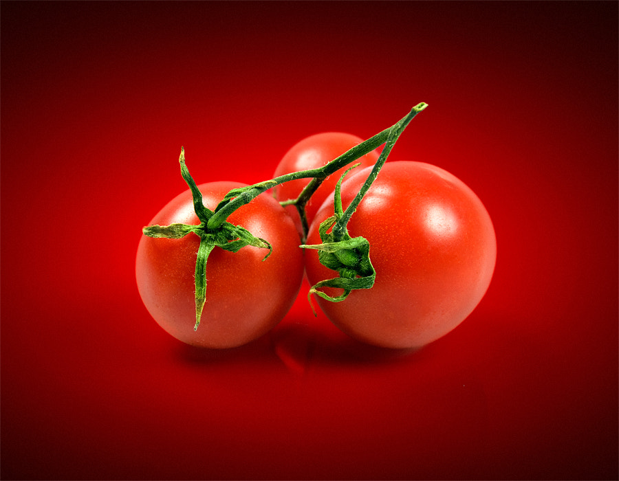 Photograph tomatoes by Max Ziegler on 500px