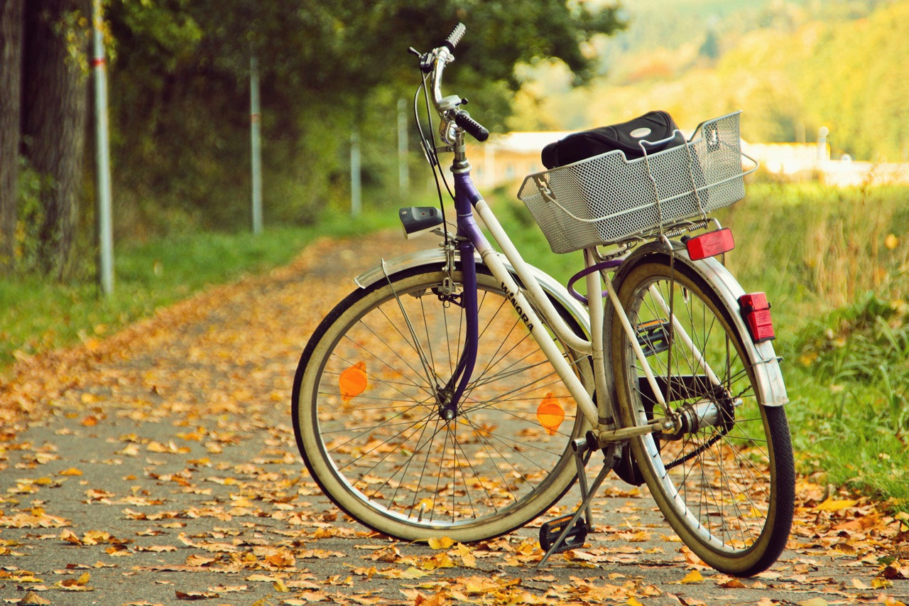 Photograph autumn ride by Maria  Emmerling  on 500px