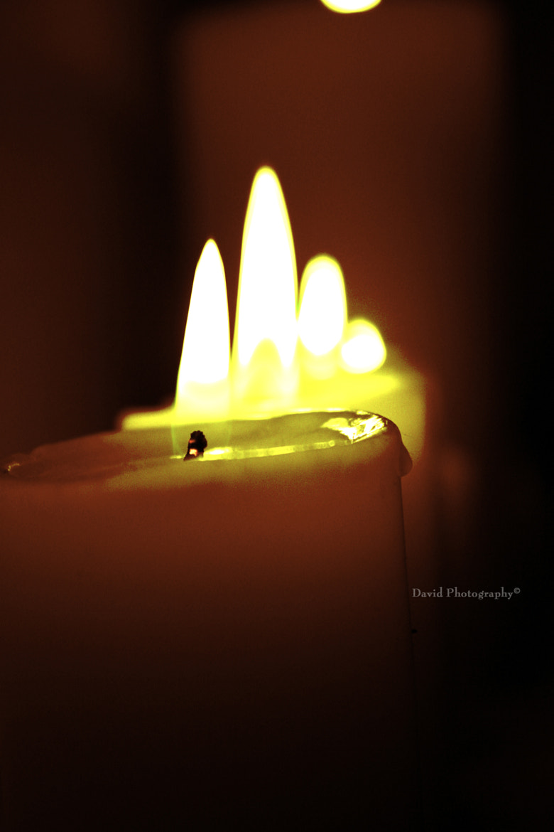 Photograph Candle by David Mehrabani on 500px