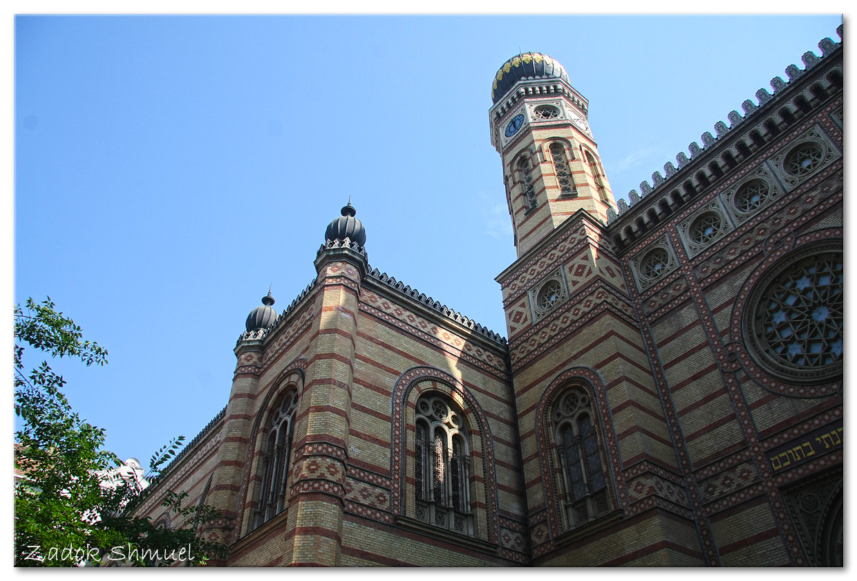 Photograph Synagogue by Zadok Shmuel on 500px
