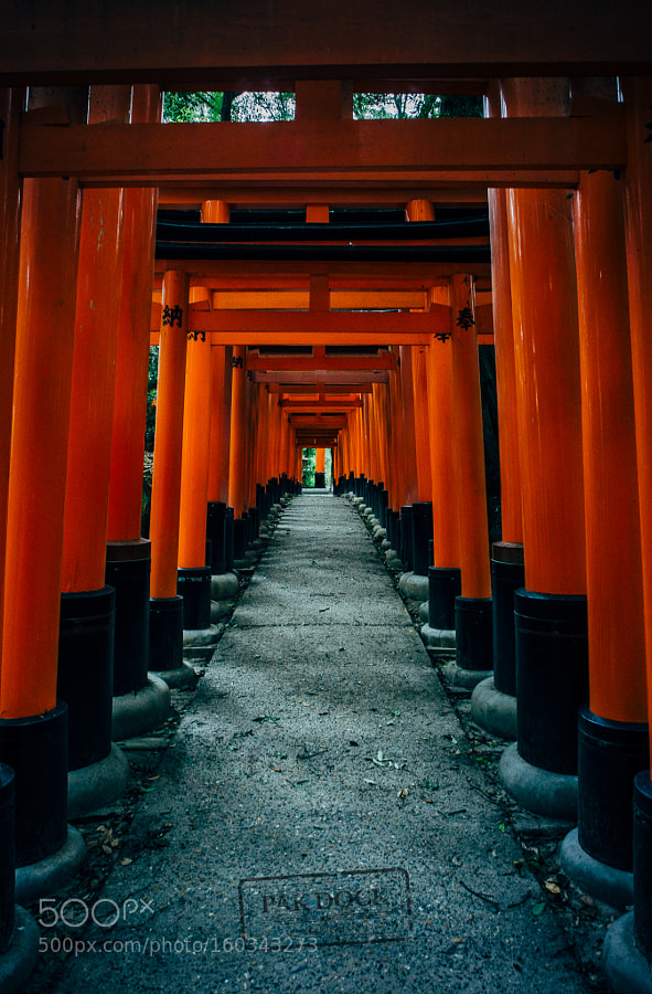 The way back at Fushimi Inari - Kyoto