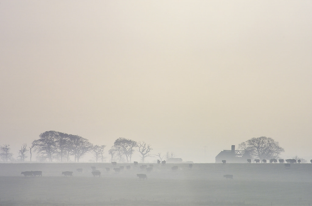 Photograph Minimalist landscape by George Pearson on 500px