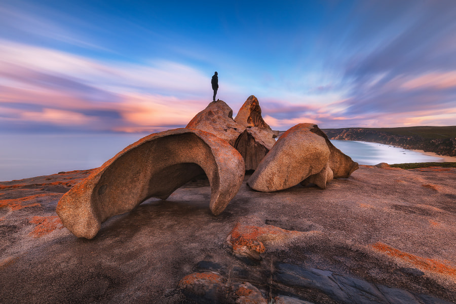 What If by Dylan Toh & Marianne Lim