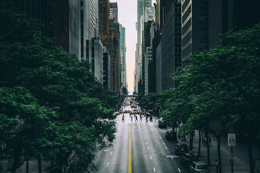 New York Minute by Ryan Millier on 500px.com