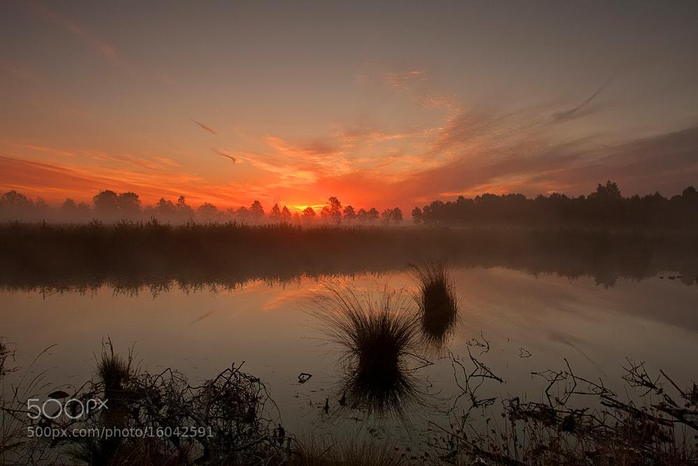 Photograph Engbertsdijsvenen by Tom  Kruissink on 500px
