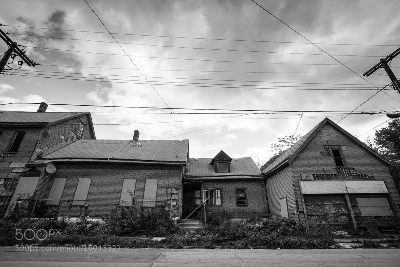 Photograph Buffalo, 2012. by Erin  Wilson on 500px